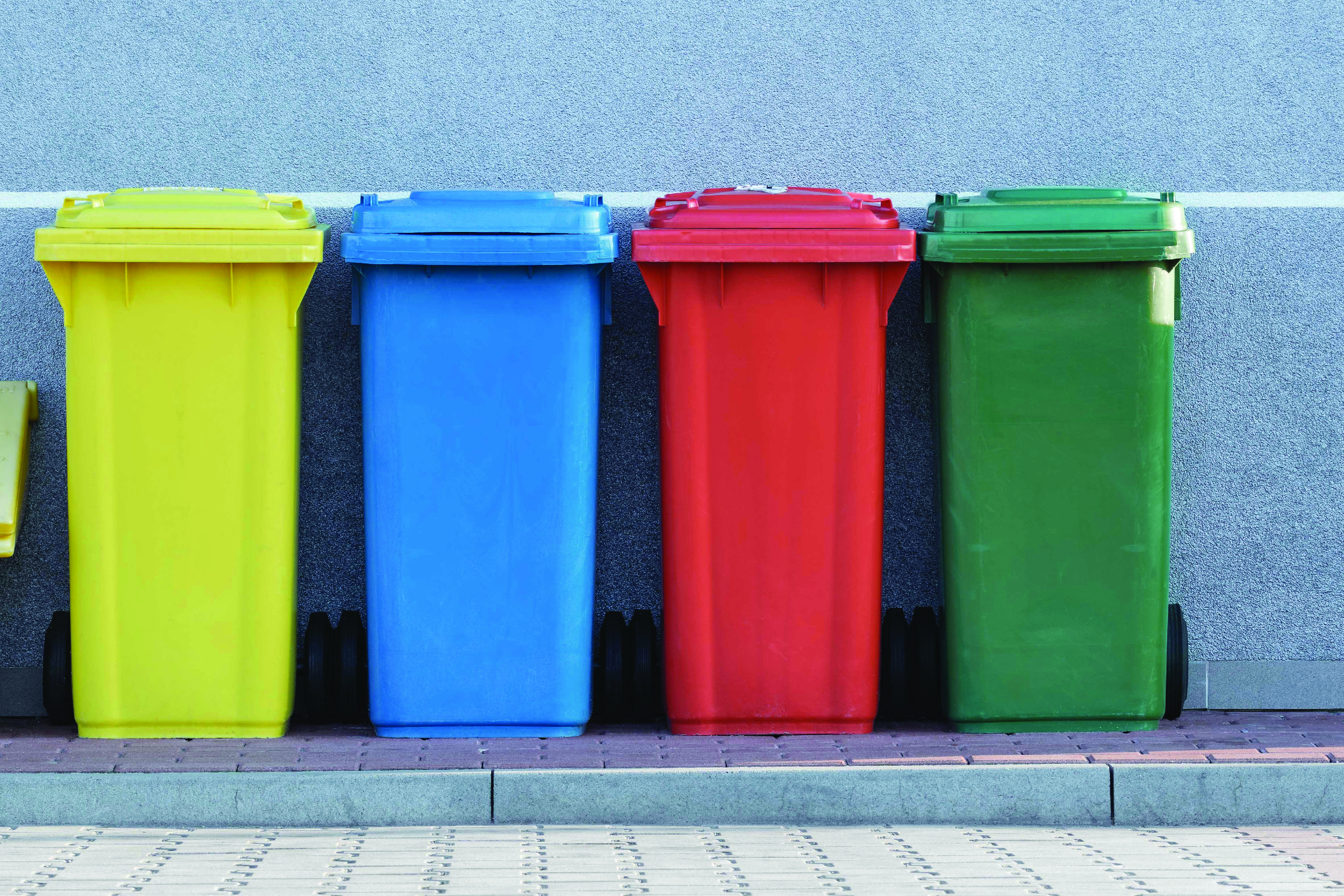 Recycling vs. Composting